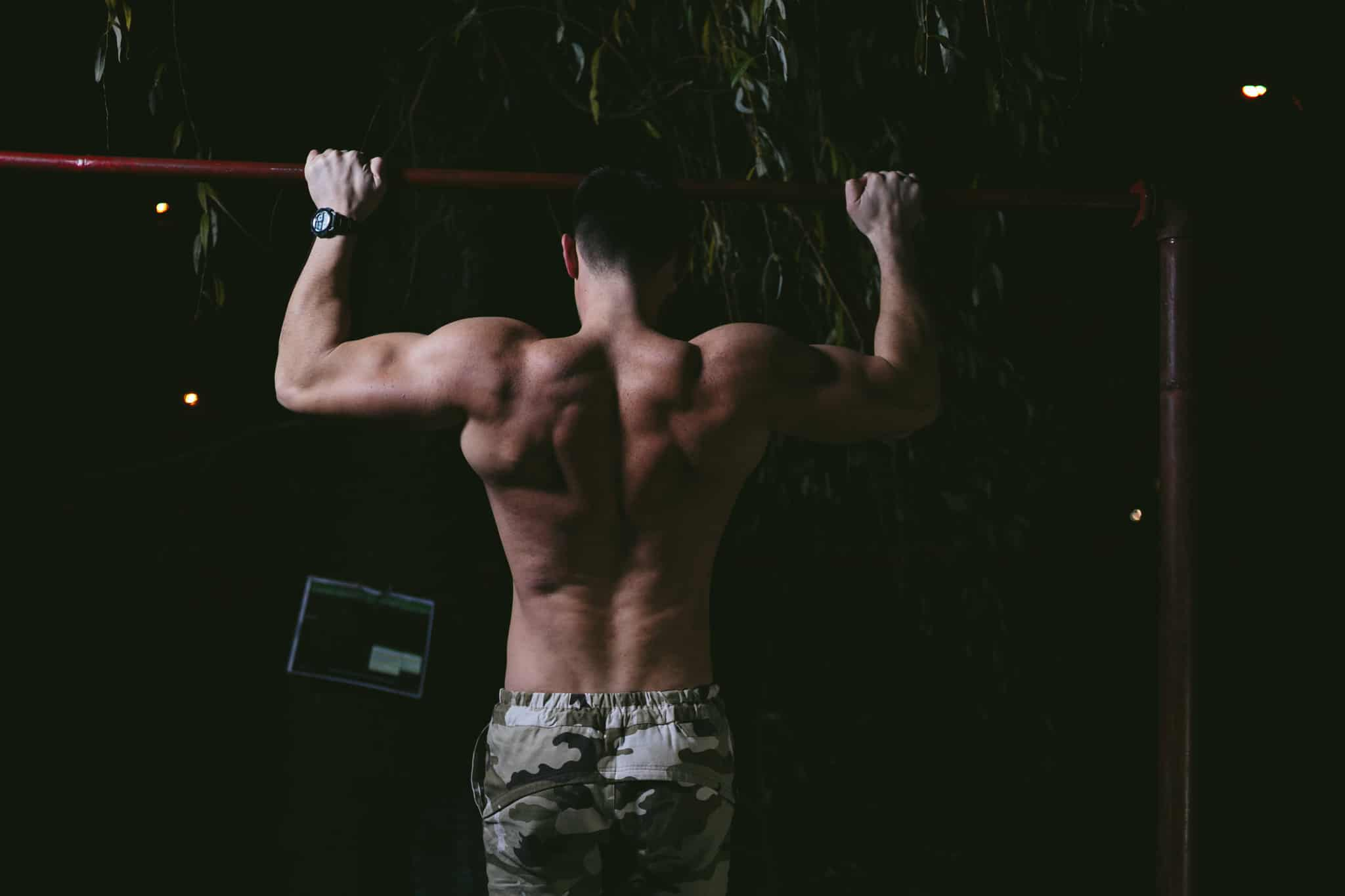 how to build back and biceps with pullups