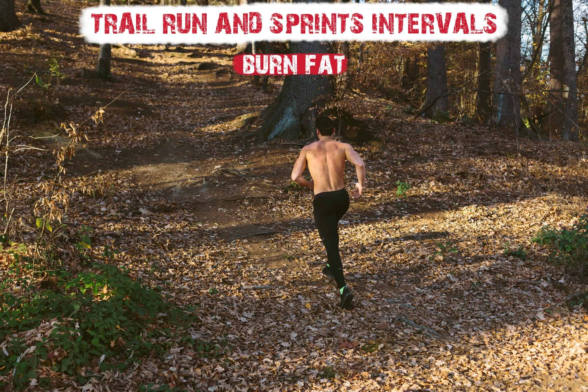 Trail Run and Sprints to Lose Fat